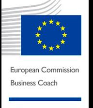 European Commision Business Coach Luis Font